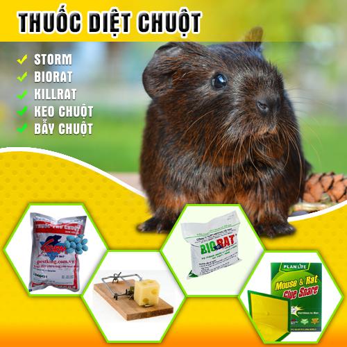 Thuốc diệt chuột không cần mồi nhử cao cấp