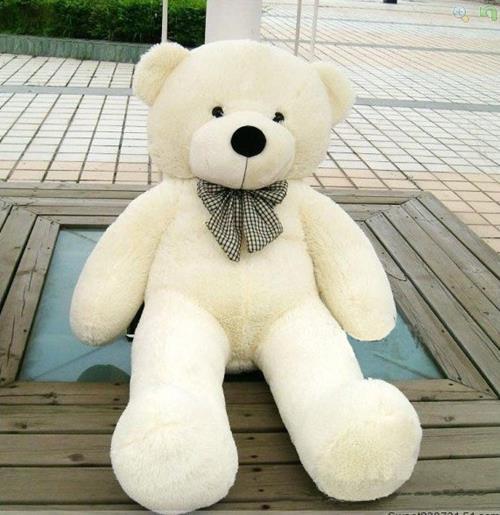 Có nên tặng gấu bông làm quà sinh nhật bạn trai