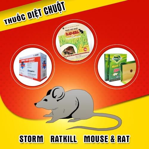 Giải pháp diệt chuột tốt nhất