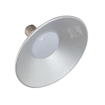 Đèn led Lowbay D LB01L/20W Rạng Đông